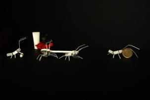 Lise-Crepeau-Photographie-Vanités-03